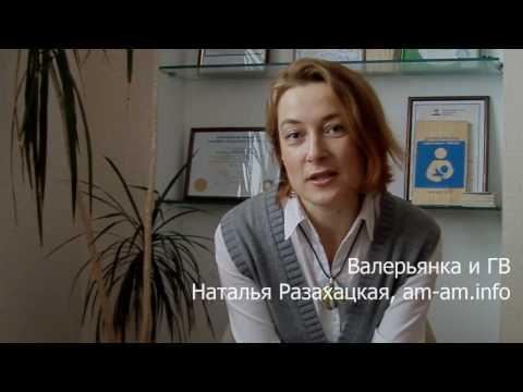 Валерьянка при лактации (грудном вскармливании, ГВ): совместимость, дозировка, период выведения