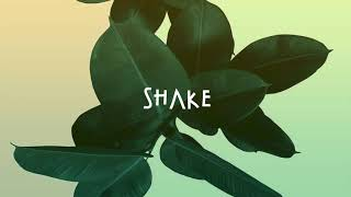 "[FREE] Davido x Wizkid x Ycee Afrobeat ""SHAKE"" Afrobeat Instrumental"