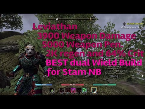 ESO: Leviathan - DUAL WIELD Stamina Nightblade PvP Build for Horns of the Reach.