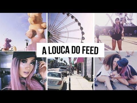 Como organizar o FEED do Instagram!