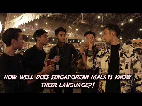 How Well Do Singaporean Malays Know Their Language?