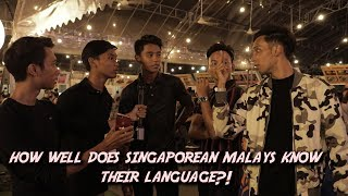How Well Do Singaporean Malays Know Their Language?