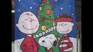 #15F Snoopy Peanuts Garden Flag used VGC 30 inches by 41 inches