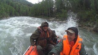 Річка Біла, риболовля на харіуса / Рибалка на Алтаї.