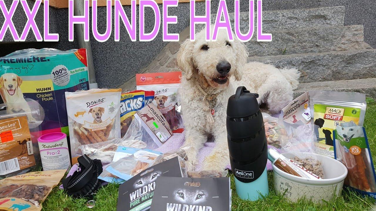xxl hunde haul🛍🐶  youtube