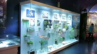 ロシア宇宙飛行に関する博物館。ガガーリンに関する展示、ソユーズの展...