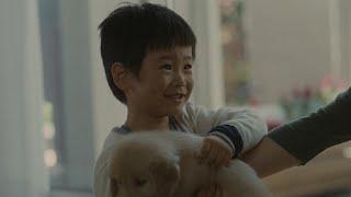 柴犬の銀行印をゲット! ⇒ http://hb.afl.rakuten.co.jp/hsc/1439d009.4...
