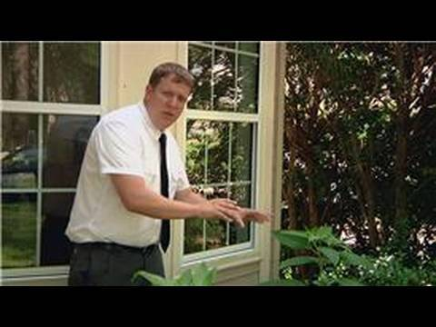 Pest Control : How To Get Rid Of Stink Bugs