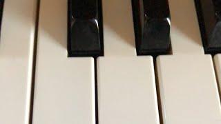 Piano stream NEW