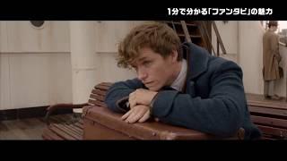 『ファンタスティック・ビーストと黒い魔法使いの誕生』宮野真守が魅力を語る/登場人物編