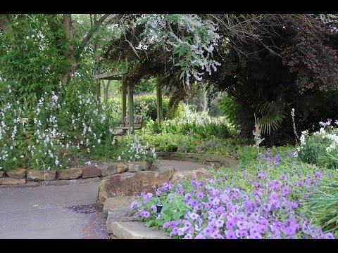 Mercer Arboretum And Botanic Gardens In Humble Tx May 2018 Youtube