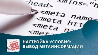 SEO умного фильтра: Настройка условия «Вывод метаинформации»