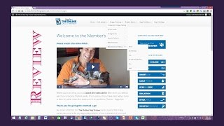 Doggy Dan's Online Dog Trainer Review - Why Would You Choose The Doggy Dan Training System