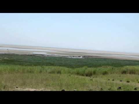 Tanzania - Lake Manyara Hot Springs