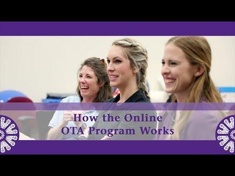 how-the-online-ota-program-works-at-st.-catherine-university