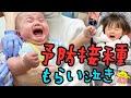 أغنية 【もらい泣き注意】赤ちゃんが予防接種で大号泣!1歳&5ヶ月年子姉妹