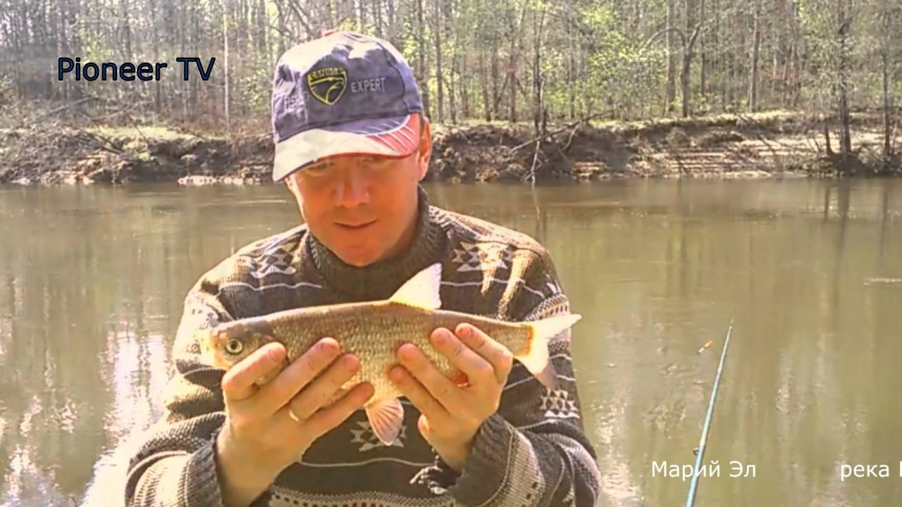 рыбалка на оле видео