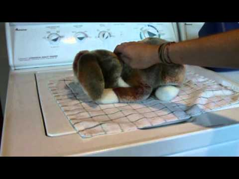 How to Pick up/ Hold your rabbit - YouTube