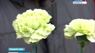 Вести Марий Эл - В Йошкар-Оле прошёл День памяти участников ликвидации аварии на Чернобыльской АЭС
