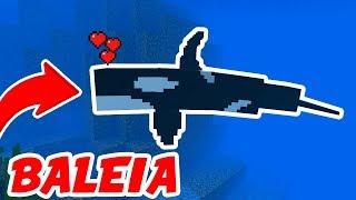 ADICIONARAM A BALEIA ORCA NO MINECRAFT POCKET EDITION