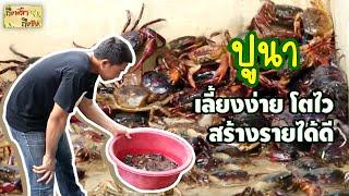 ถึงพริกถึงขิง (Tuengpriktuengkhing) 02-08-17 : ปูนา