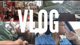 Vlog #1: Target, Furniture Shopping, Weekend