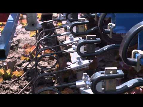 Mechanical Weed Control in Vegetable Production (Jan 2013)