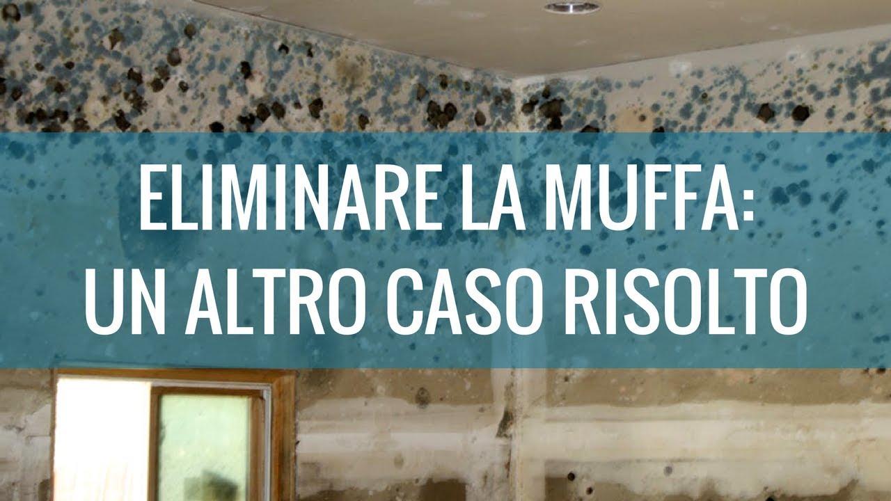 Muffa Vicino Agli Infissi eliminare umidità archivi - archimede group | addio umidità