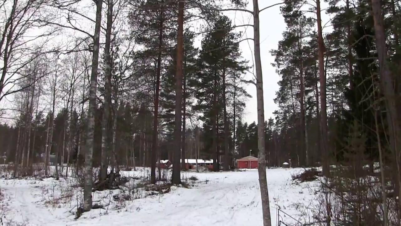 Keljonkangas Frisbeegolf
