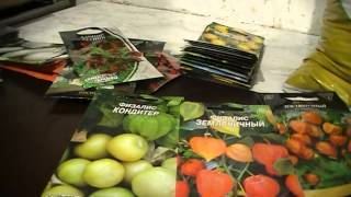Сад и огород .Физалис - чудо плод моего сада лечим цистит и почки, гипертонию