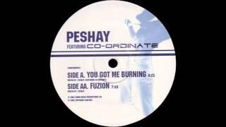 Peshay Featuring Co-Ordinate - You Got Me Burning