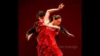 Flamenco de fuego