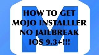 How to get mojo installer videos / InfiniTube