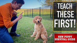 NEW PUPPY SURVIVAL GUIDE: The FIRST Things to Teach Your NEW PUPPY! (EP: 3)