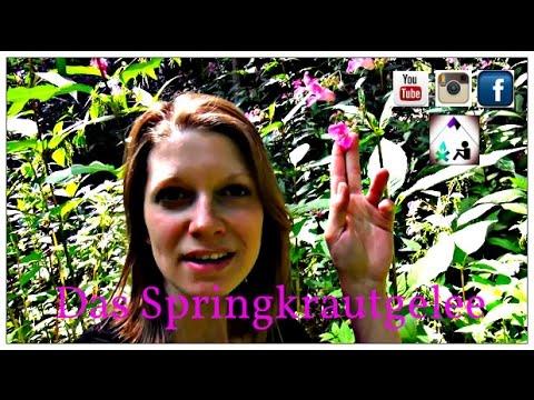 Das Springkrautgelee - Wilde Outdoorküche - Bavaria Botanika
