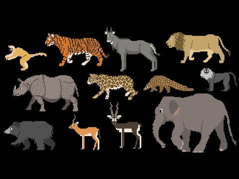 Indian Mammals - Animals Series - Elephant, Tiger, Bear - The Kids' Picture Show (Fun & Educational)