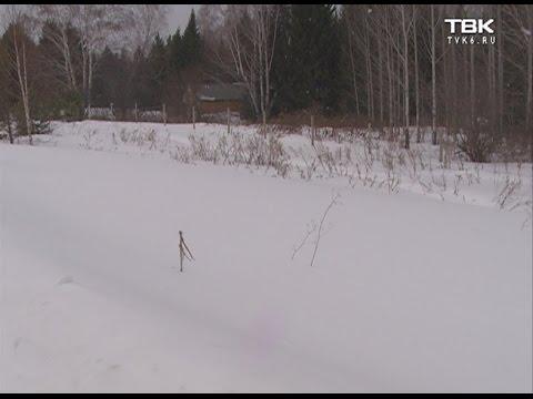 Под Красноярском многодетным семьям выделили участки прямо на дороге