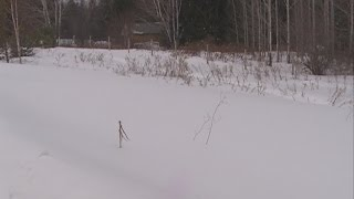 видео Как проверить очередь на земельный участок для многодетной семье?