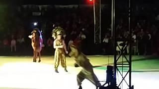 bbnandito en circo on ice en divertí neza 23 de diciembre 2016 thumbnail