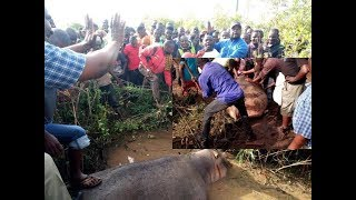 TAHARUKI! Kiboko Azua Balaa Mtaani Morogoro