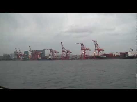東海汽船 ジェット船 東京湾 キリンの群れ 2011/7/18