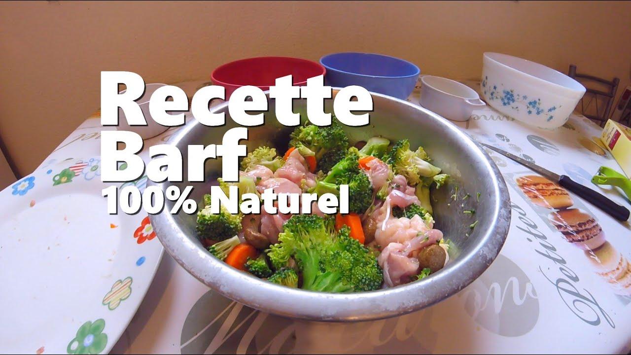 Repas pour chien maison ventana blog for Alimentation chien maison