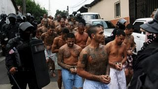 What is MS-13?