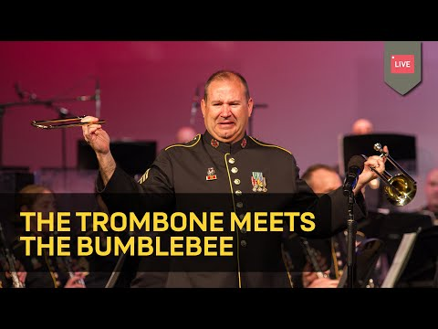 The Trombone Meets The Bumblebee