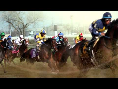 The 2015 Illinois Derby