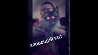 Танцующий кот киборг