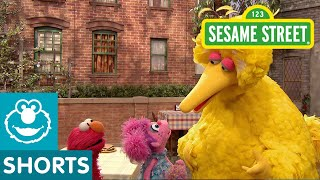 Sesame Street: The Good Birds
