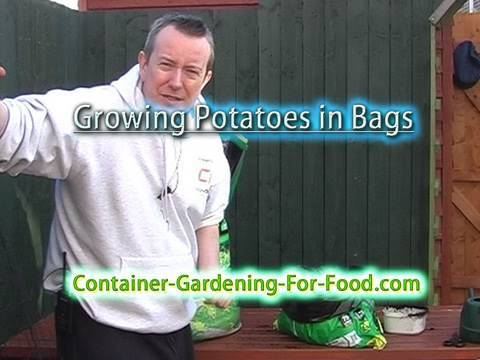 How To Grow Potatoes In Bags Youtube