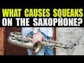 WHAT CAUSES SQUEAKS ON THE SAX?