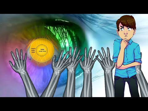 Flat Earthers, Seeing and Touching is No More Valid than Other Information thumbnail